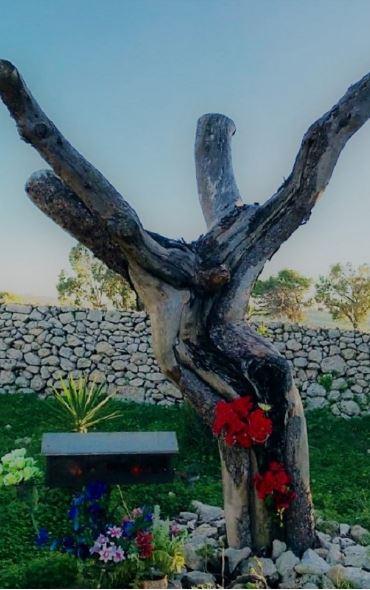 Crucifix Tree