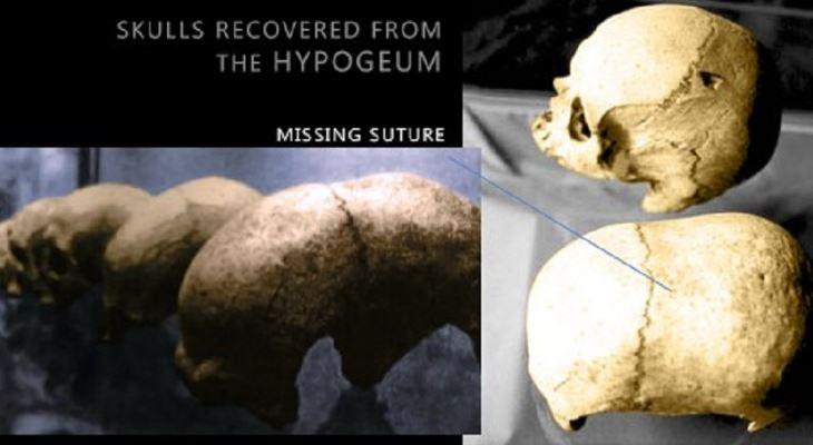 skulls found at the hypogeum